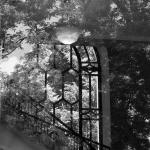 Emory-Michael-Carlos-Window-Reflection-P1420924-(web-size)