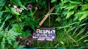 Respect_Flowers_P1640010